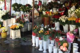 Fiscal inspectors monitor the activity of live flower merchants