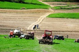 National Farmers Federation of Moldova to launch entrepreneurial cooperatives